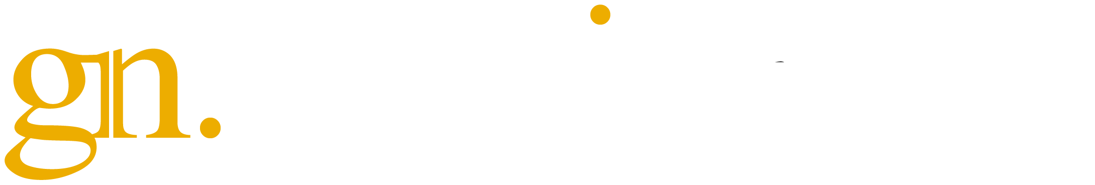 GN Media Group - Digital Marketing Agency For Local Business
